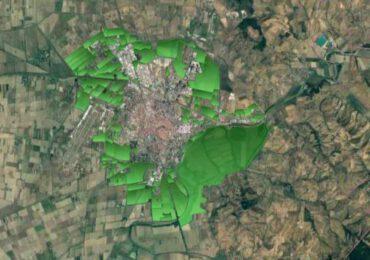 Giulianotti socio onorario di Italia Nostra. Scola propone una foresta urbana attorno a Grosseto
