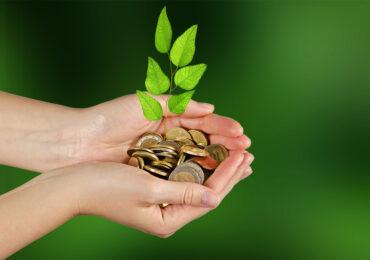 """<b>Decarbonizzazione</b> e Recovery, la strategia """"green"""" per uscire dalla crisi post-Covid"""