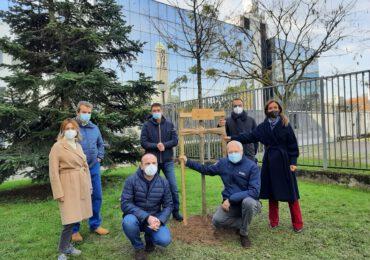 Snam, piantato il primo albero di una foresta di 3 mila piante