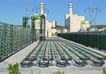 Biofissazione della <b>CO2</b>, energia dalle microalghe