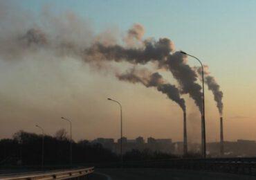 La capacità di <b>cattura</b> del carbonio non cresce abbastanza