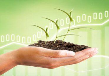Cambiamenti climatici: le occasioni di investimento