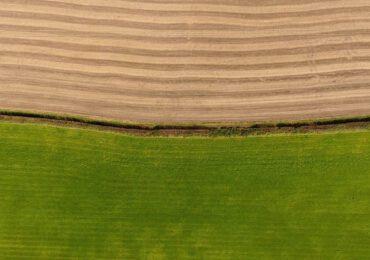 Così la transizione ecologica può partire dall'agricoltura