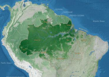 L'Amazzonia dallo spazio: il degrado forestale è la prima causa del rilascio di <b>CO2</b>