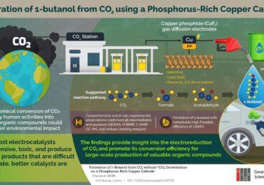 <b>Conversione</b> dell'anidride carbonica in butanolo utilizzando catodi di rame ricchi di fosforo