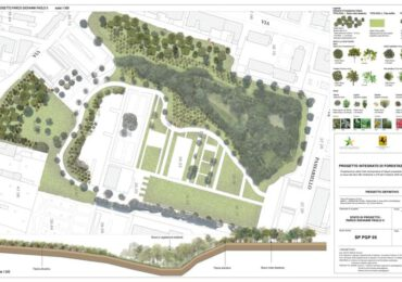 Forestazione urbana, il Comune di Pomigliano riceve 500mila euro