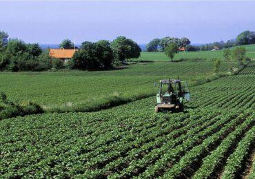 Da allevamenti e colture 17 miliardi di tonnellate di <b>CO2</b> - <b>Clima</b> - ANSA.it